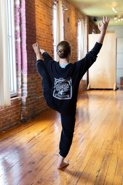 Hatha-Raja yoga